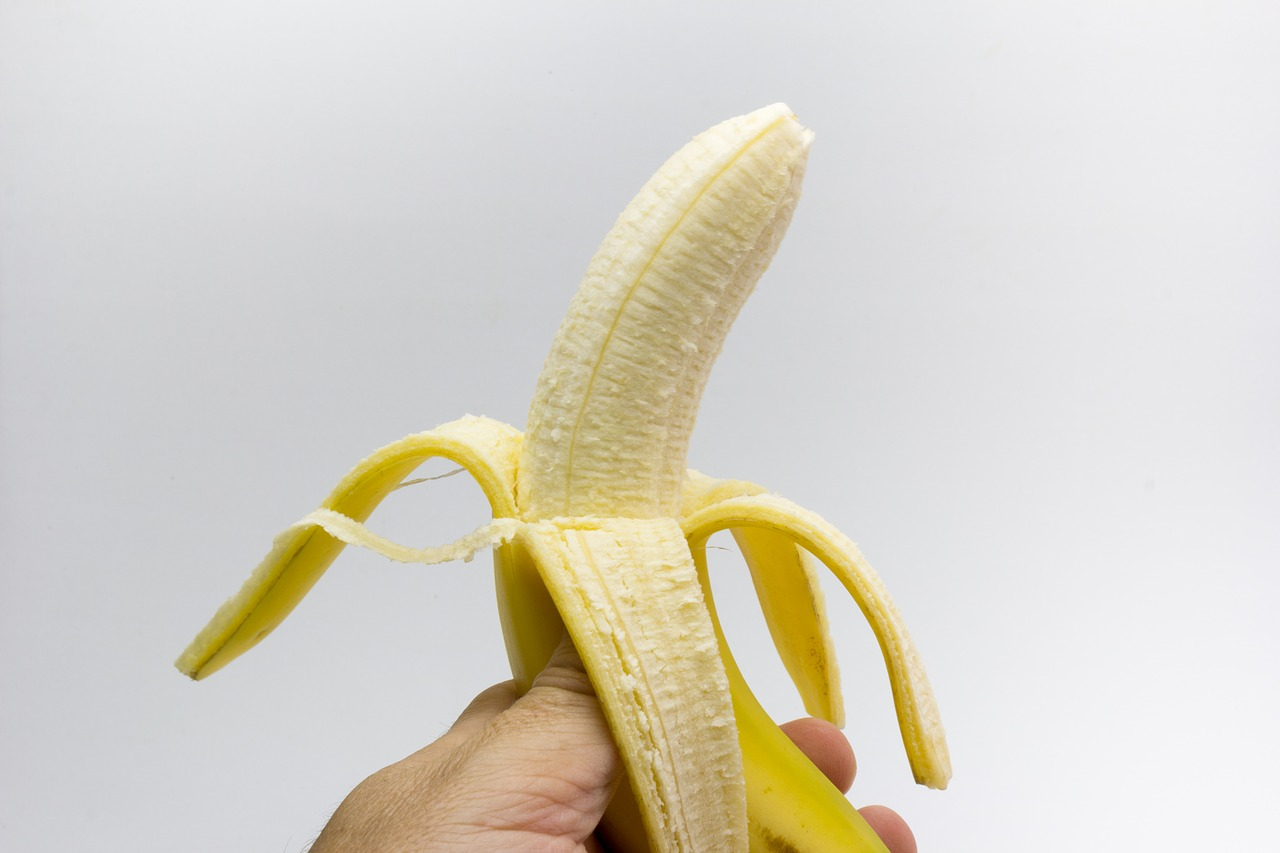 grösster penis der welt